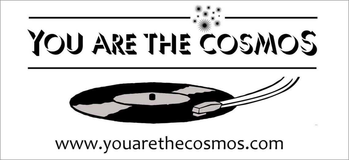 #40 You Are The Cosmos, Pedro Vizcaíno